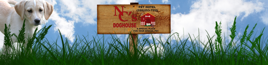 NC's Doghouse of Saint Cloud